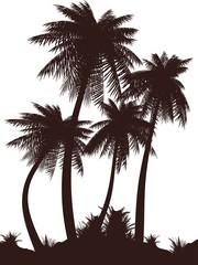 Palms_siluet