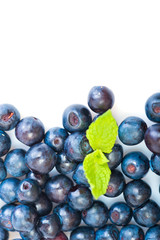 Fresh blueberry with green leaves of mint on white background
