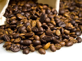 Coffee beans on a white