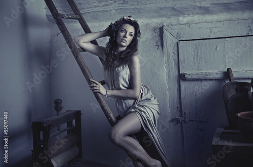 Sexy cute lady leaning on wooden ladder