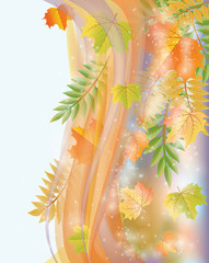 Autumn banner with leaves, vector illustration