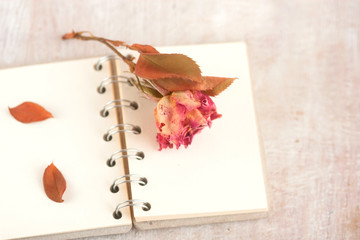 old dead red rose on the notebook
