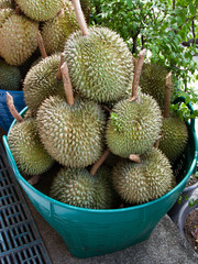 Durian fruit in a plastic basket
