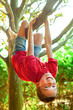 Boy hanging hanging from a tree branch