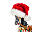 Antique Rocking Horse with Red Santa Claus hat