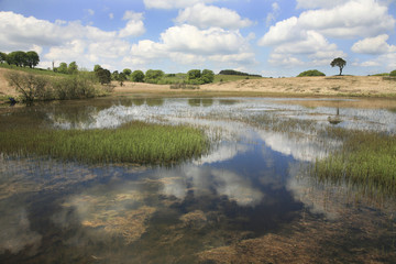 Somerset hillside pond