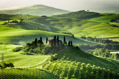 Fototapety, obrazy : Farm of olive groves and vineyards