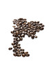 Thai arabica coffee bean