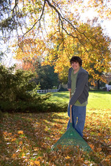 Raking Leaves Teen Boy with Rake