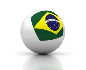 Brazilian Volleyball Team