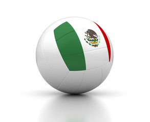 Mexican Volleyball Team