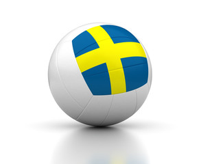 Swedish Volleyball Team