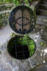 The Chalice Well in Glastonbury