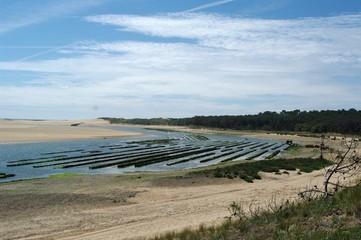 Muschelfarm an frankreichs Atlantikküste