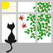cat on a window - 55155615