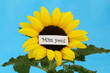 Miss you card on sunflower