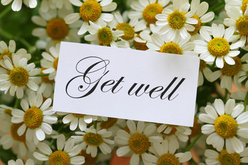 Get well note on chamomile flowers