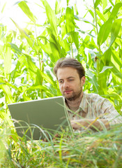 Farmer in front of corn field working on laptop computer