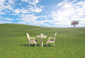 table  on the meadow