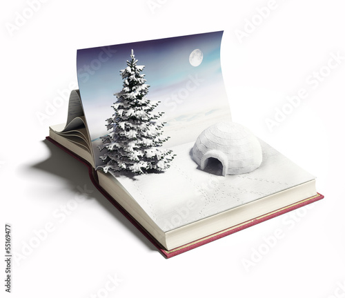 igloo on the open book