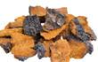 Leinwanddruck Bild - Pieces of Inonotus obliquus