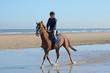 petit trot sur le sable