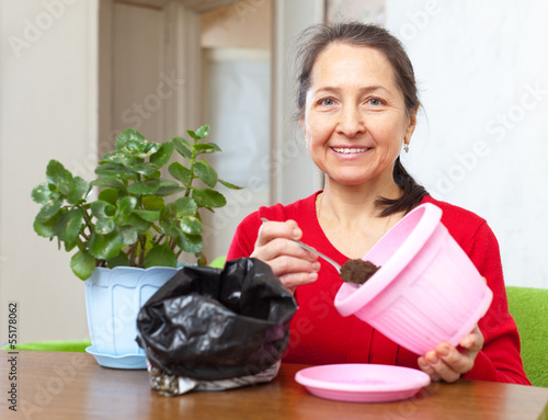 woman transplants  Kalanchoe flower