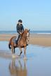 équitation plaisir