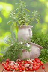 Gartenkräuter in Amphore mit Tomaten