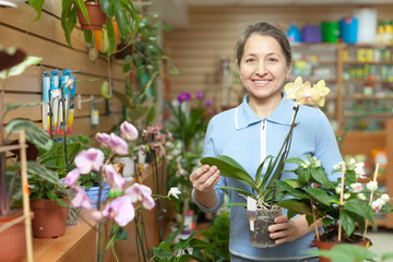 Happy mature woman with  Phalaenopsis