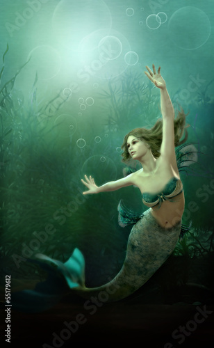 Plexiglas Zeemeermin The little Mermaid