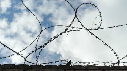 Razor wire.