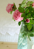 Close up of pink roses in vase