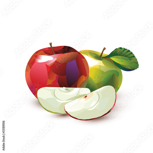 Green and red apple. Vector format