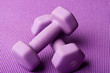 Purple weights on a purple yoga mat