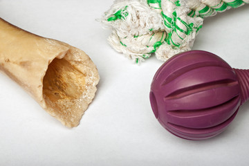 Assortment of dog toys against white background