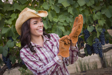 Young Adult Female Wearing Cowboy Hat and Gloves in Vineyard