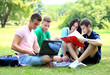 four smiling student studying in green park