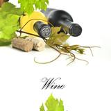 wino - 55202016