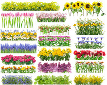 """Постер, картина, фотообои """"Summer flowers borders set"""""""