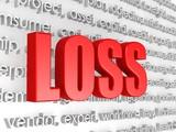 Loss in word cloud