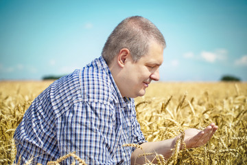 Agronomist  on cereals field in summer