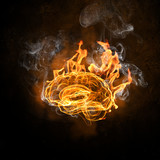 Human brain in fire
