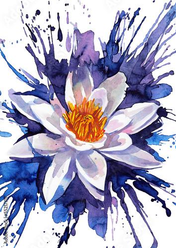 kwiat-lilii