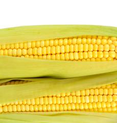 Crude corns isolated on white
