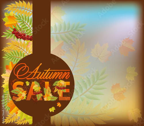 Autumn sale shop card, vector illustration