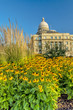 Morning at the Idaho State Capital with blooming yellow flowers
