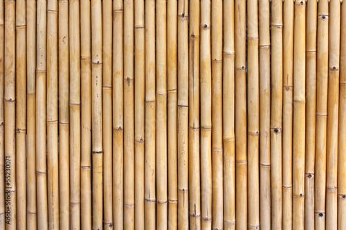 Aus Bambussen gewebt