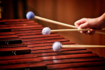marimba and xylophone