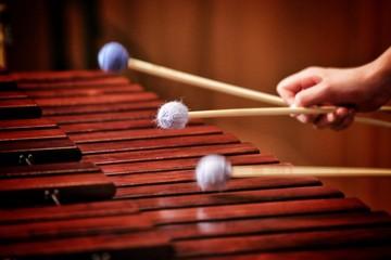marimba and xylophone